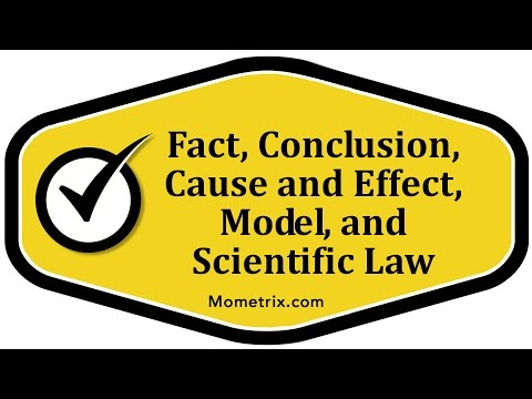 Fact, Conclusion, Cause and Effect, Model, and Scientific Law