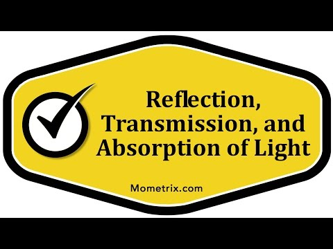 Reflection, Transmission, and Absorption of Light
