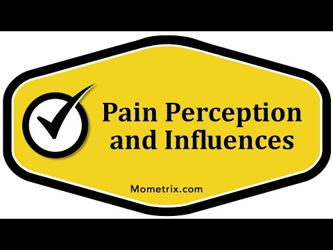 Pain Perception and Influences