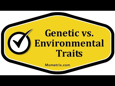 Genetic vs. Environmental Traits