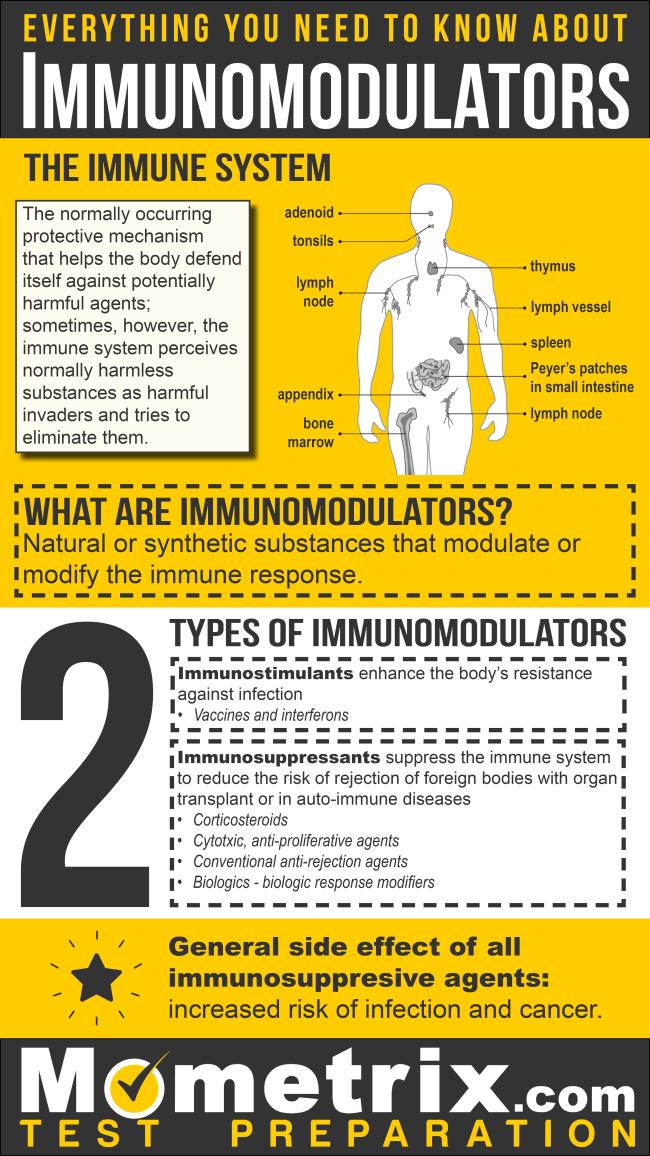Infographic explaining immunomodulators