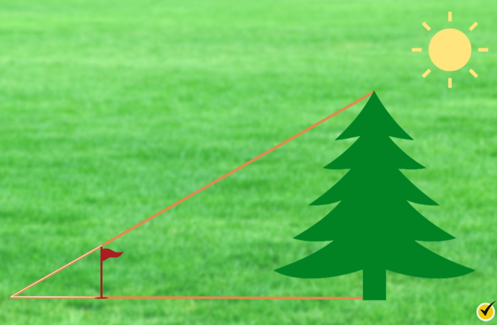 Tree method triangles over top
