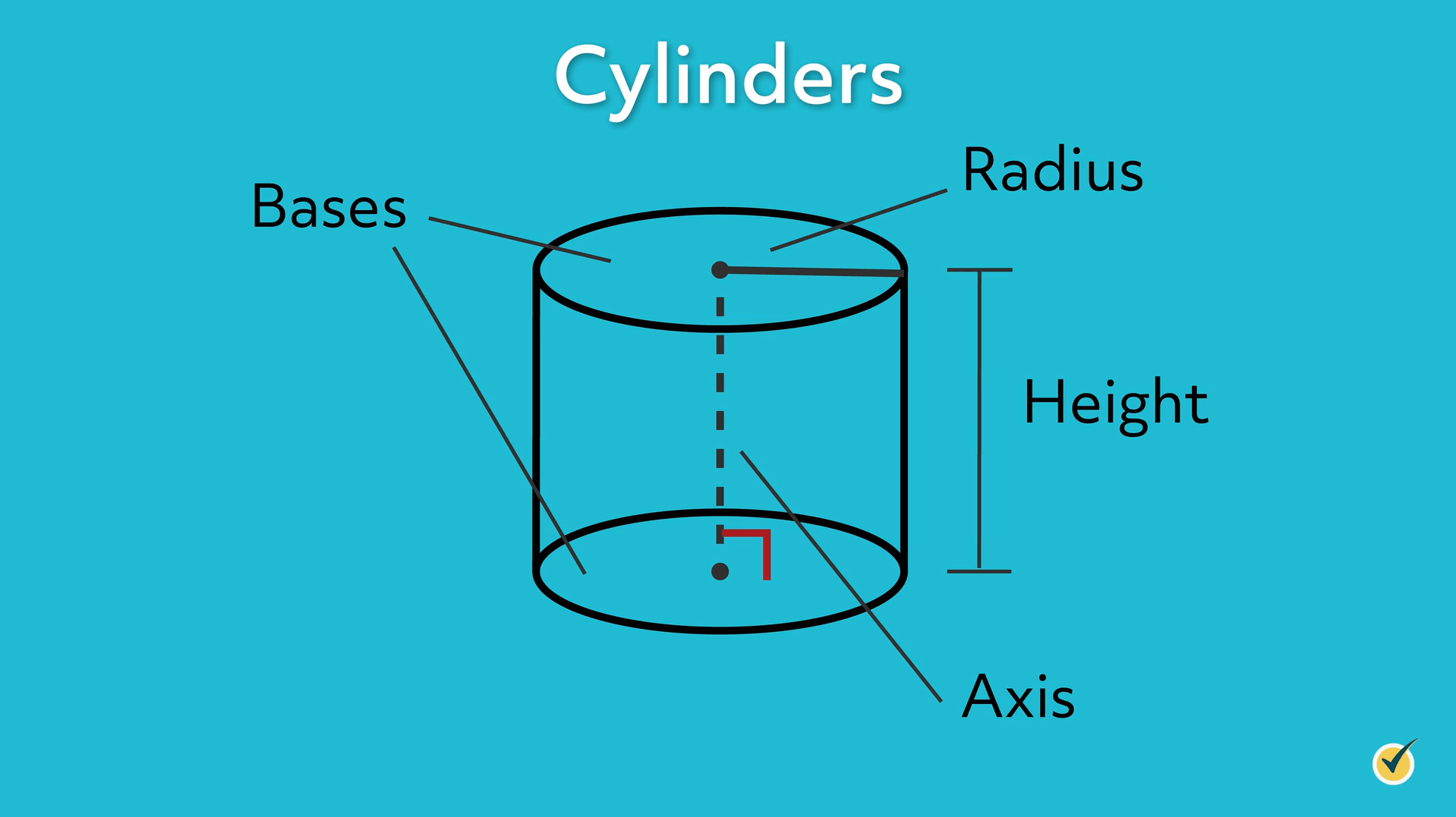 dimensions of a cylinder